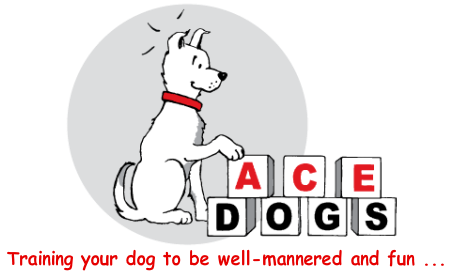 ACE Dogs - Training your dog to be well-mannered and fun ...